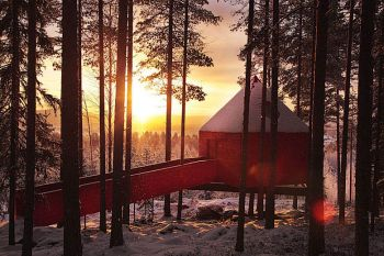 Treehotel - Swedish Eco Hotel